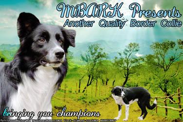 MBARK BC Manip by greensmurfsdontlie