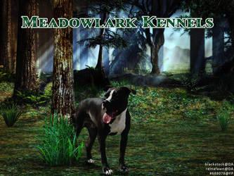 meadowlark kennels amstaffy manip by greensmurfsdontlie