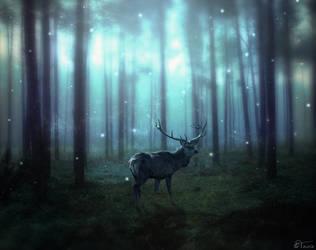 Dark Forest by Tairix