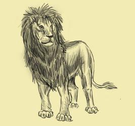 Lion for Thalia by Elhanna