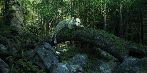 Jaguar test by nickashman68