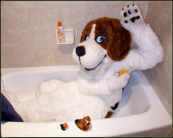 Cheesebeagle in a Tub by cheesebeagle