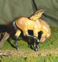 Dun Pegasus Foal by Scaequestrian