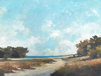 Along a Sandy Road by litka
