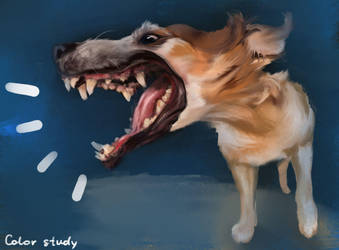Dog by SallyGreeneva