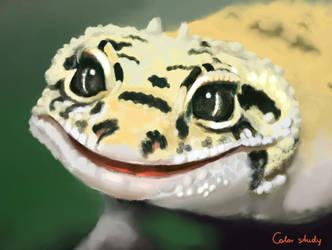 Smile by SallyGreeneva
