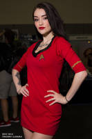 Ari Dee Star Trek SDCC2014 by wbmstr