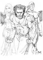 More X-Men by fernandomerlo