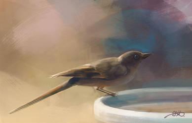 Bird study by YouYouArt