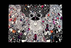 Spreading wings by ChristinaKingma