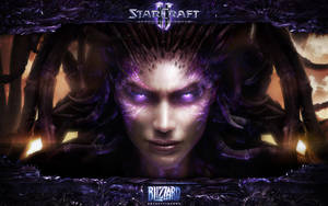 Face of the Swarm (with Blizzard border) by Dexistor371