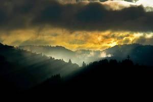 Sunrice... by kamzik