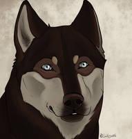 Fan art - Roamer ~Home~ by swiftywolf
