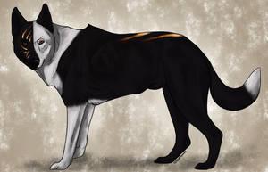 Fan art - Ranach ~Home~ by swiftywolf