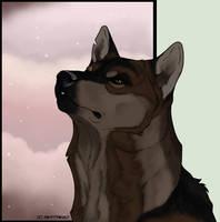 First Snow by swiftywolf