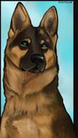 German Shepherd by swiftywolf