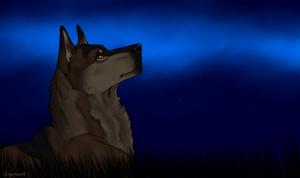 Fallen Meteor by swiftywolf