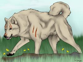 Home Fanart - Fuss by swiftywolf
