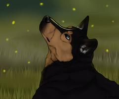 Home Fanart - Vigr by swiftywolf