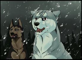 GNG - Final Battle by swiftywolf