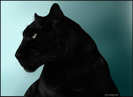 Black Panther by swiftywolf