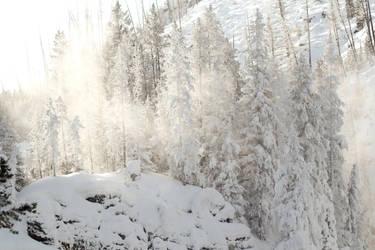 Winter Wonderland 4 by Popstudios