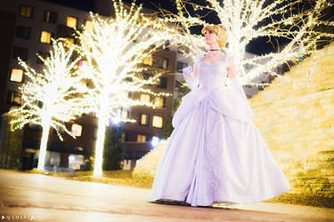 Cinderella - Going To The Ball by FireLilyCosplay