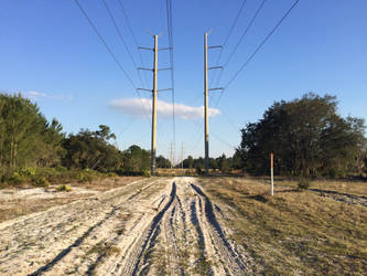 Telephone Lines by TopSideUnder