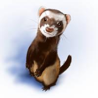 Nasty ferret by Bestary