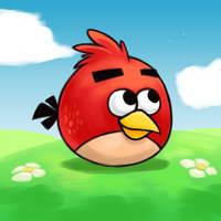 Cute bird by Bestary
