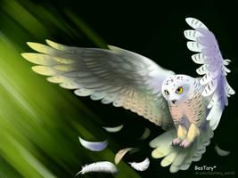 Owl by Bestary