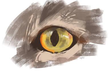 cat by darksapphiredrop