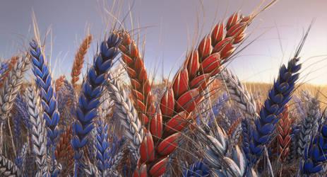 Patriotic Wheat Cinema 4D Redshift by botshow