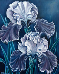 Purple and Silver Iris by TernFeather