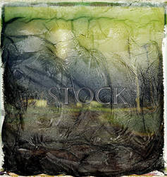 Instant-film-texture-100 by Evil-e33