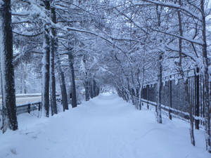 white alley by 4ajka