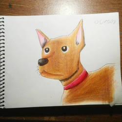 Dog by TyphlosionPokemon