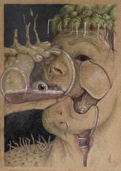 Bulboscaline by diosenzanome