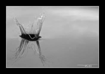 BW Water Splash... by OrisTheDog