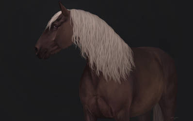 Horse by Yanmi