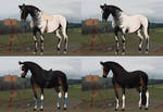 Auction horse adopt 9 [CLOSED] by Yanmi