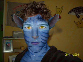 Me as a Navi Avatar by ninetales666