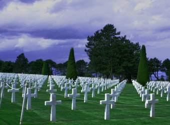 A duty of Memory by Dolguldur