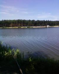 fishing by LittleGardener