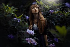 magic garden by AngelikaZbojenska