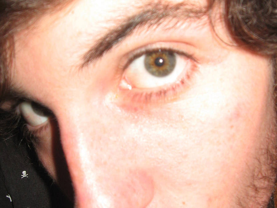 Canvasharris's Profile Picture