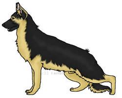 German Shepherd by iluvGSDs