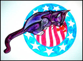 My Kitten Beastie on USA Plate. by LauranChilds