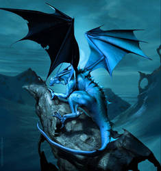 Midnight Dragon by reeks