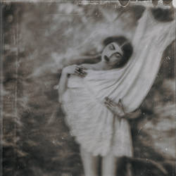 The Velvet of My Dress II by RapidHeartMovement